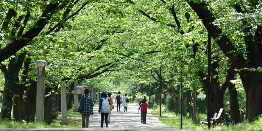 「江東区辰巳2丁目9番 辰巳の森緑道公園」の画像検索結果