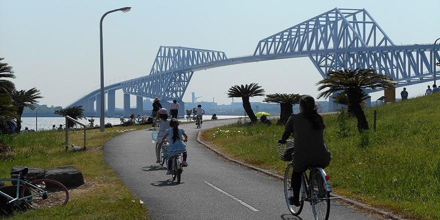 Img cycling mv